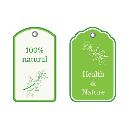 medicate: Handdrawn vector illustration blackthorn. Medicinal berry.For traditional medicine, gardening or cooking design, package, wrapper, label. Illustration