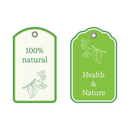 nightshade: Handdrawn vector illustration nightshade. Medicinal berry.For traditional medicine, gardening or cooking design, package, wrapper, label.