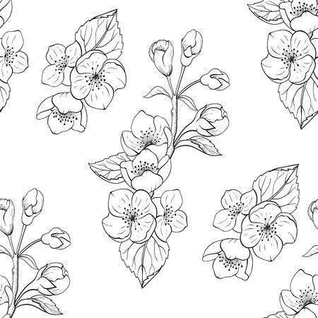 Nahtlose Schwarz-Weiß-Jasmin-Blumenmuster. Hintergrund, Textil, Hintergrund, Stoff.