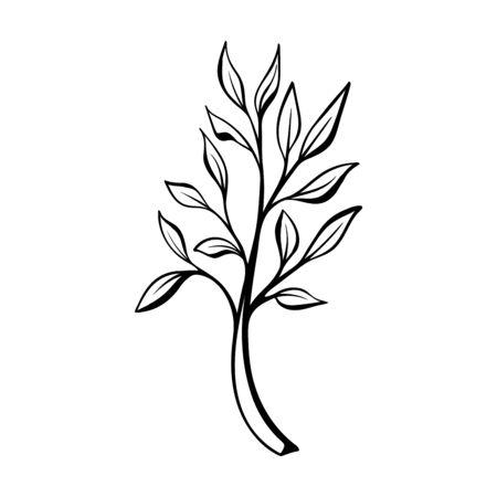 Doodle style floral decorative element. Иллюстрация