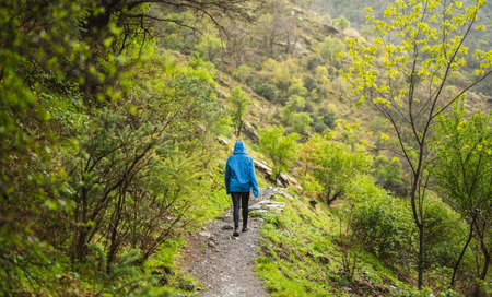 girl in blue jacket walking on a sidewalk surrounded by green vegetation while it rains