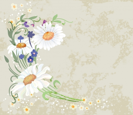 fancy border: Floral vector illustration on grunge background