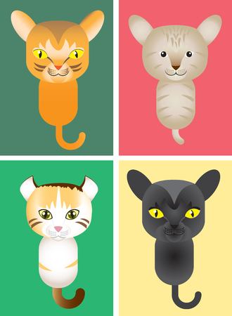 Illustration different kinds of cat; bombay, abbyssinian cat, american bobtail, Bombay