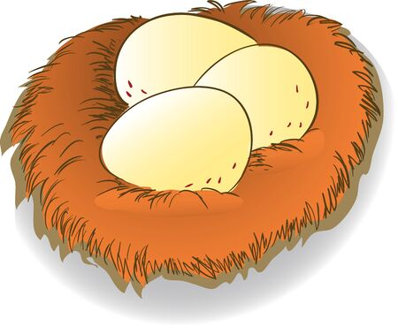 brown egg: Colorful of egg in brown nest clipart, Vector Illustration Illustration