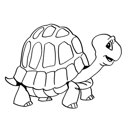Black And White Cartoon Tortoise Free Download Oasis Dl Co