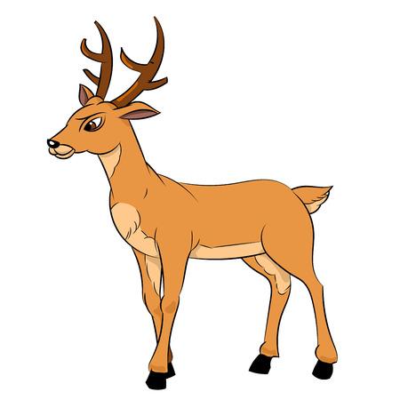 Illustration of Deer Cartoon, Elegant deer isolated on white background-Vector Illustration