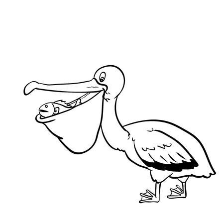 Geïsoleerde Pelikaan Cartoon, geïsoleerd op een witte achtergrond. Zwart-wit eenvoudige lijn vectorillustratie voor kleuren boek - lijn getrokken vectorillustratie. Stock Illustratie