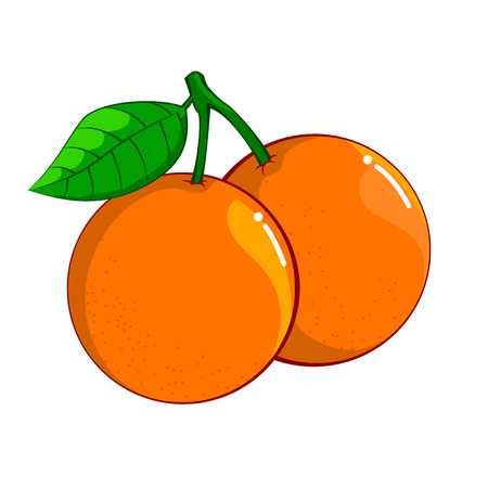Illustration of Orange isolated on white background, fresh healthy food,  organic natural fruit. Vector Illustration.