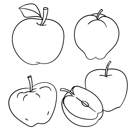 Set of Apples isolated on white background, ink hand drawn style, for coloring book, education and food concepts. Vector Illustration Çizim