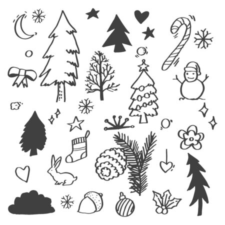 Hand sketched floral design elements for Christmas: pine tree branches, holly, mistletoe and other floral ornaments for text decoration