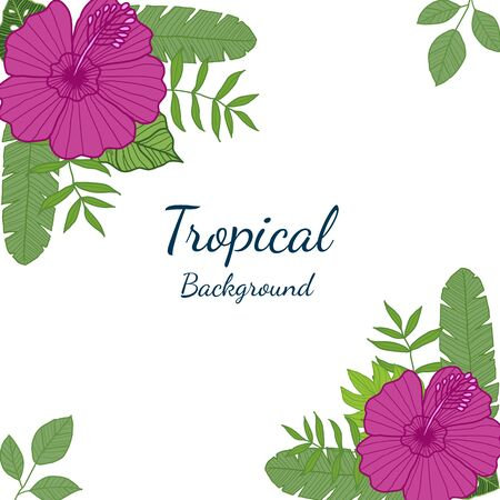 Tropical leaves and Flowers on White background. Exotic botanical design for Greeting card, packaging design, Web design - Vector Illustration Çizim
