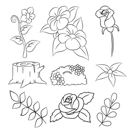 Doodle flowers pattern, hand drawing Flower, Branch, leaf - vector illustration