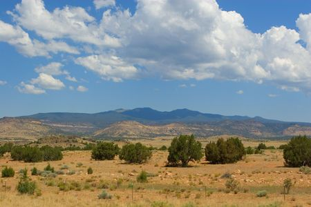 undeveloped: New Mexico desert landscape with tall, fluffy white clouds