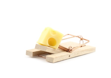 Mouse trap with cheese isolated photo