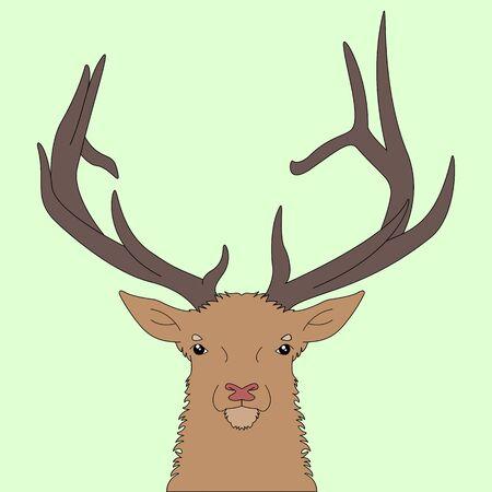 Forest deer head. Illustration
