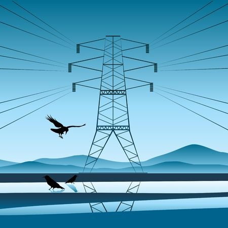An electricity pylon reflecting of water where birds are resting photo