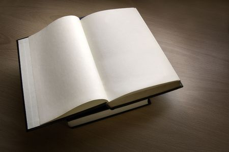A blank paged opened book. Stock Photo