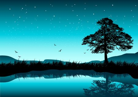 A beautiful evening scene with a tree by a lake; stars in the sky.