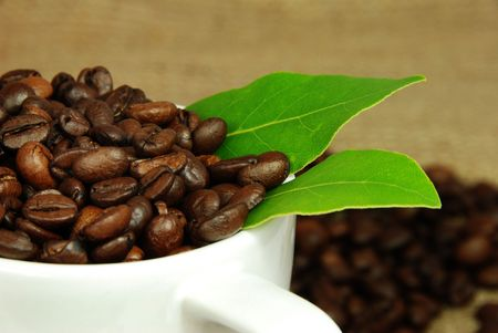 Fresh coffee beans in a cup. Stock Photo - 2835655