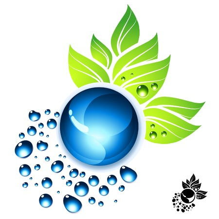 fresh idea: Water drops and green leaves vector illustration. Illustration