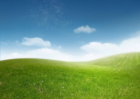 A clean and sunny landscape. Stock Photo