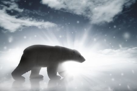 polar bear on the ice: A silhouetteed polar bear walking in a snow storm.