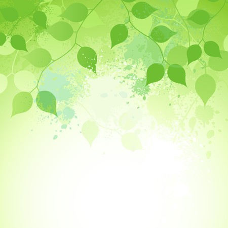 A fresh nature background with branches and watercolour drops. Stock Vector - 7241698