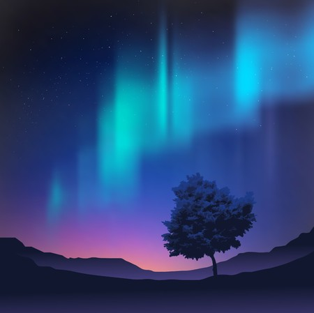 borealis: The northern lights with a tree in the foreground, vector illustration. Illustration