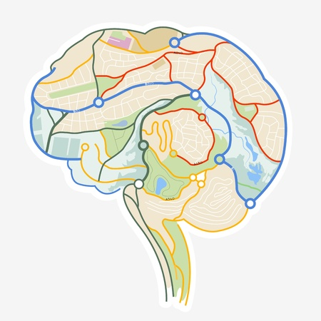 nav: Brain Map  An illustration of a human brain made up from a map  illustration