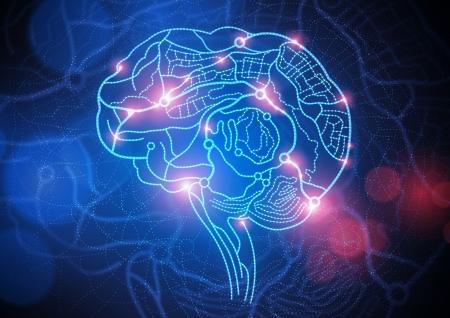 Routekaart van The Mind. Conceptueel beeld, wegen en straten die deel uitmaken van een menselijk brein. Stockfoto