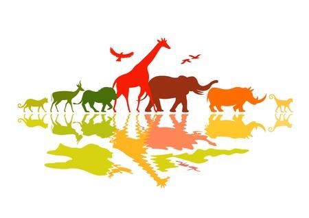 animales de la selva: Safari de la fauna - animales salvajes ilustración vectorial.