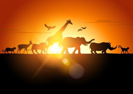 animales de la selva: Safari Sunset - Parque Burgos contra una puesta de sol - ilustración vectorial.