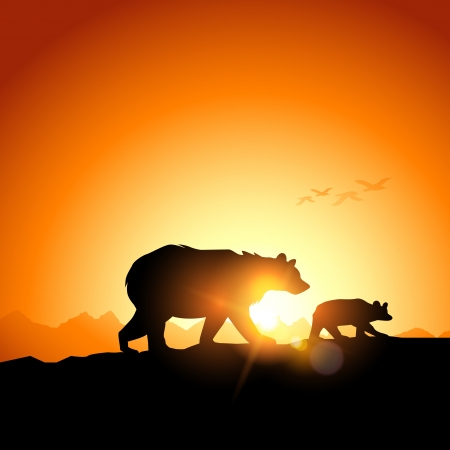 cubs: Wild Bears silhouetted against a sunset in the mountains.