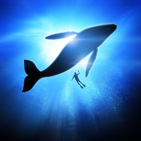 Profond sous l'océan, en regardant vers un plongeur et baleines à bosse. Banque d'images
