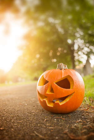 A Carved Pumpkin in October on Halloween