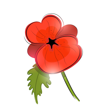 remembrance: A single red poppy - remembrance day. Vector illustration