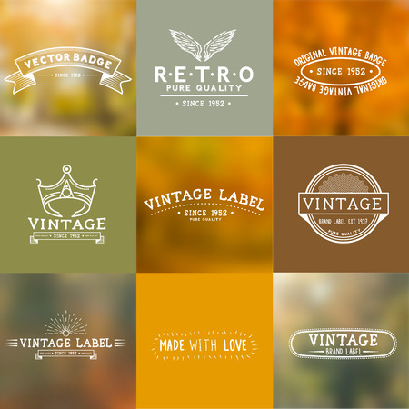 Vintage Vector Badges with autumn backgrounds Vektorové ilustrace