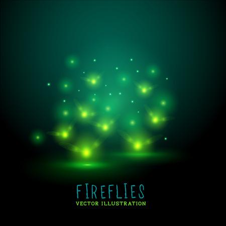 Gloeiende Fireflies. Een groep van gloeiende vuurvliegjes in de nacht, vector illustratie Stockfoto - 27769070