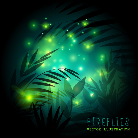 undergrowth: Fireflies in the forest at night - vector illustration.