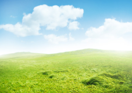 horison: Misty Morning. Green rolling hills and a clear sky.