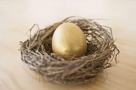 gniazdo jaj: Złote jajko w gnieździe. Koncepcyjne obrazu. Złota Inwestycja, gniazdo jaj na przyszłość. Zdjęcie Seryjne