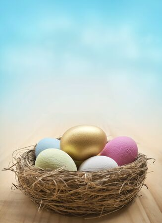 easter nest: A collection of painted easter eggs in a nest. Easter background