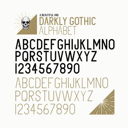 abecedario: Hand Drawn texto Vector del alfabeto. Negrita y la luz. Ilustraci�n del vector.
