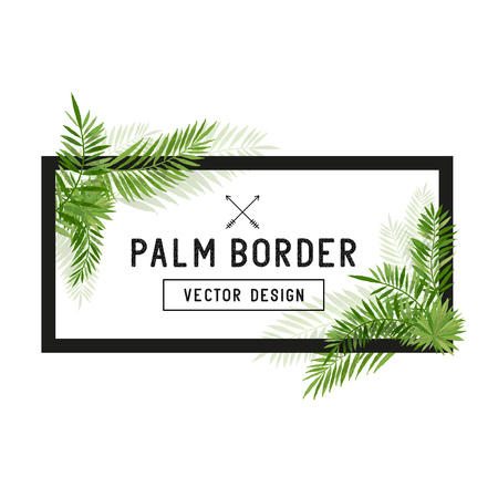 Tropical Palm Leaf Border Vector. Summer Palm tree leaves around a border. Vector illuatration. Çizim