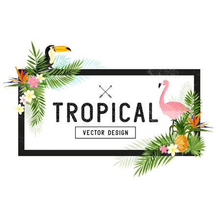 invitacion fiesta: Diseño de la frontera tropical. elementos dibujados a mano tropical incluyendo aves del paraíso de flores, pájaros y Toucan Pelican y elementos florales tropicales.