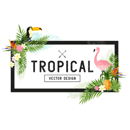 Tropical Border Design. tropical hand drawn elements including bird of paradise flower, Toucan and Pelican birds and tropical floral elements.