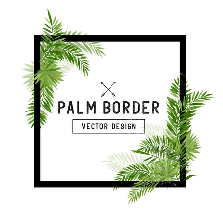 edges: Tropical Palm Leaf Border Vector. Summer Palm tree leaves around a square border. Vector illuatration.
