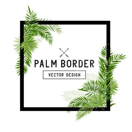 Vetor de fronteira em folha de palmeira tropical. Folhas de palmeira de verão em torno de uma borda quadrada. Ilustração em vetor. Ilustración de vector