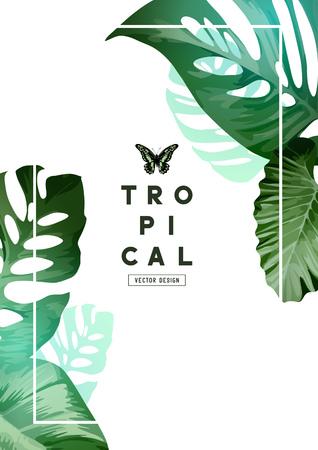 A elegant botanical Floral background frame design with palm tree leaves. Vector illustration
