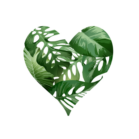 A green heart love concept made from tropical green palm plant leaves. Vector illustration.  イラスト・ベクター素材
